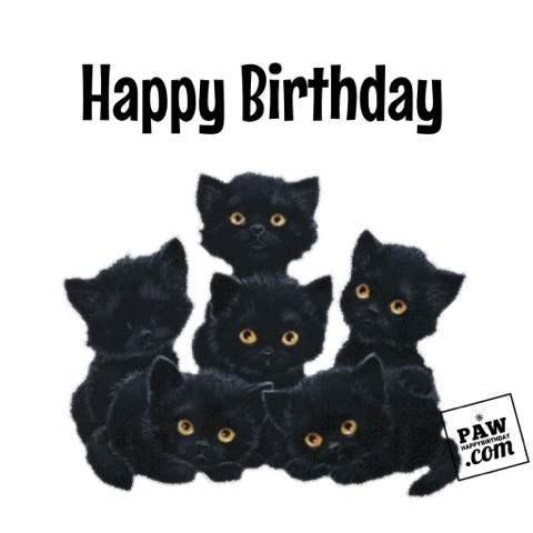 Adorable Happy Birthday Kitty Cats Searches Related To HAPPY BIRTHDAY CARDS Free