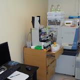 Lab Photos! - DSC00011.JPG