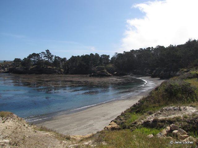 2010 - SX10_0198_Point_Lobos_SP.JPG