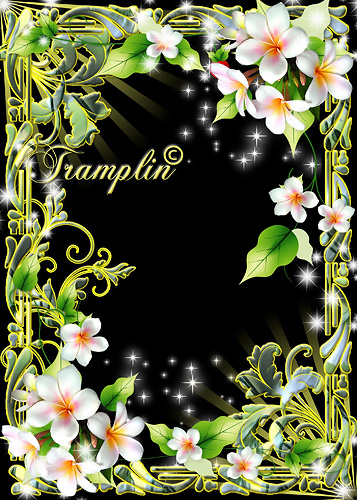 Рамка  для Photoshop с цветами  –  Словно терем расписной