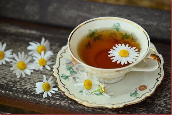 花茶、花草茶英文你會幾個?