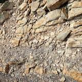 Geology Hike - IMG_0135.JPG