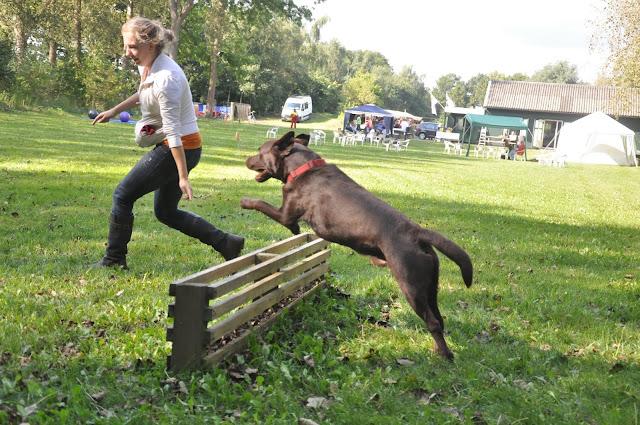 Survival voor Baas en Hond 2012 - DSC_0441.JPG
