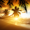 Beach Sunset Live Wallpaper APK