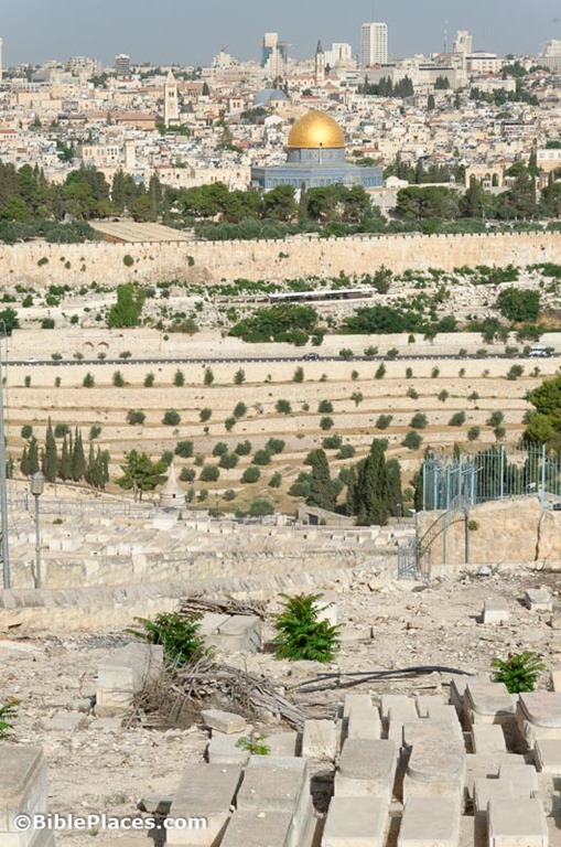 [Jerusalem-from-Mount-of-Olives-tb060%255B2%255D.jpg]