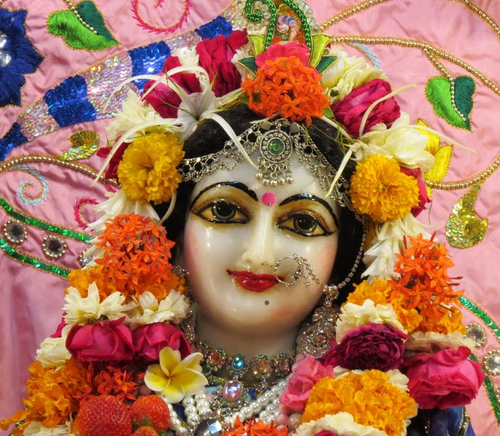ISKCON Vallabh vidhyanagar Deity Darshan 17 jan 2017 (4)