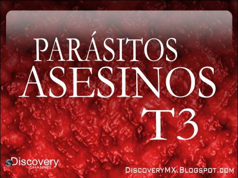 parasitos asesinos latino