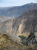 Colca Canyon - green oasis where we spend the next night