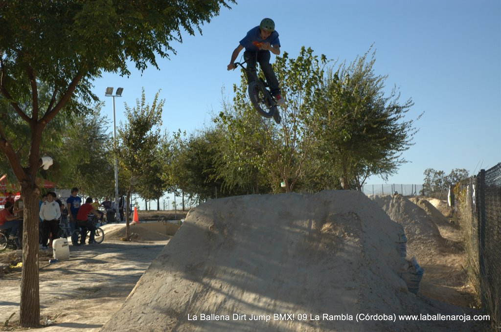 Ballena Dirt Jump BMX 2009 - BMX_09_0074.jpg