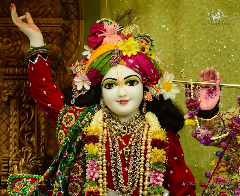 ISKCON GEV Deity Darshan 20 Jan 2017 (5)