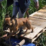 Survival voor Baas en Hond 2012 - DSC_0259.JPG