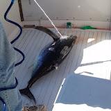 2005 Fishing