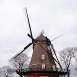 windmill laboratory of professor Paljas (Alfred Kwak) in Copenhagen, Copenhagen, Denmark