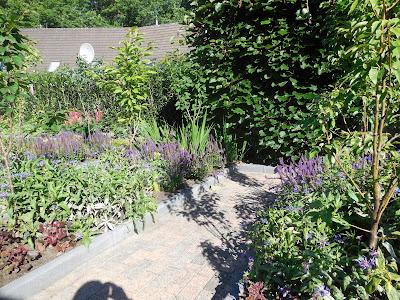 Rolstoelvriendelijke tuin met vijver