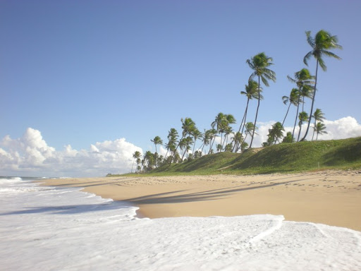 Maravillas de Brasil