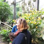 Botanická 059.jpg