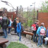 Exkurze do Záchranné stanice v Bartošovicích  5. B
