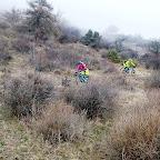 Piri Freeride jagdhof.bike (2).JPG