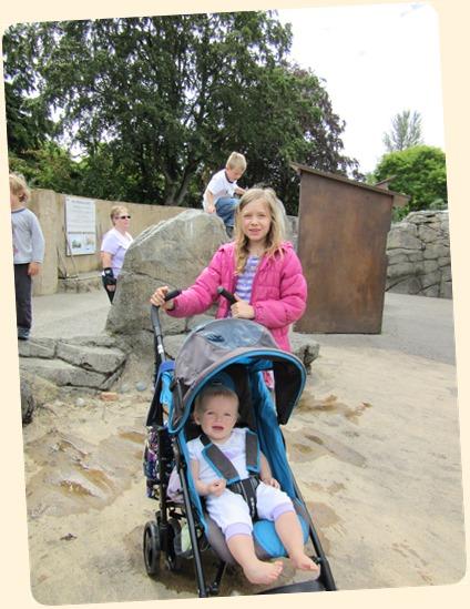 7-7 Zoo with Jack 4