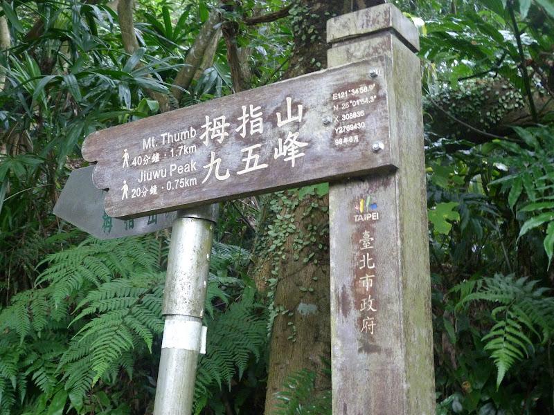 Taipei. Si Shou Shan, et la découverte des maisonnettes du professeur Y I   易教授 - P1340792.JPG