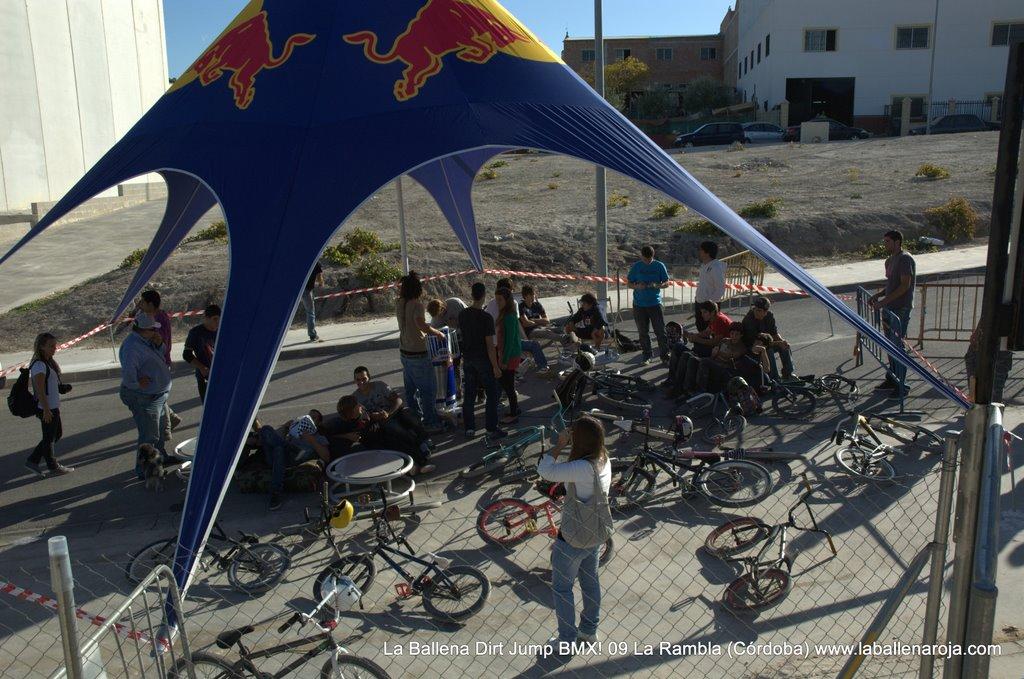 Ballena Dirt Jump BMX 2009 - BMX_09_0089.jpg
