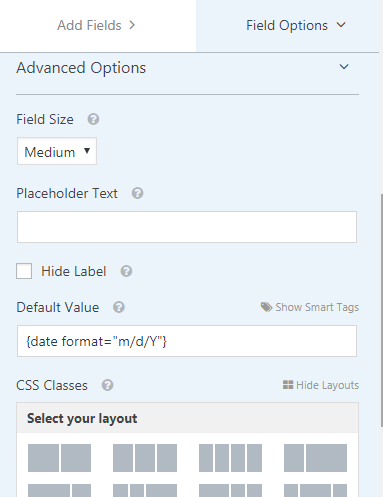 wpforms-advanced-field-options