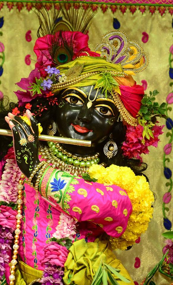 ISKCON GEV Deity Darshan 08 Jan 2017 (4)