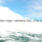DSC_4736.thumb.jpg