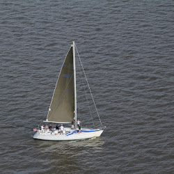 Dauphin Island Race 2013 020