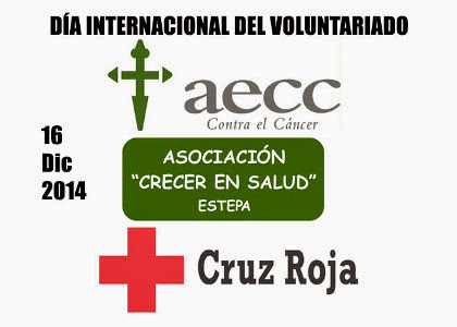 249_Voluntariadoweb.jpg