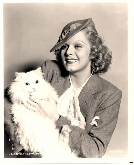 Jean Harlow and a cat