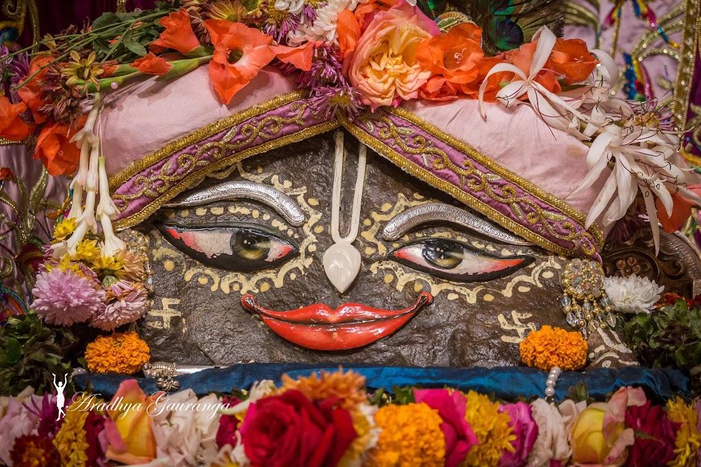 ISKCON Mayapur Deity Darshan 11 Jan 2017 (20)