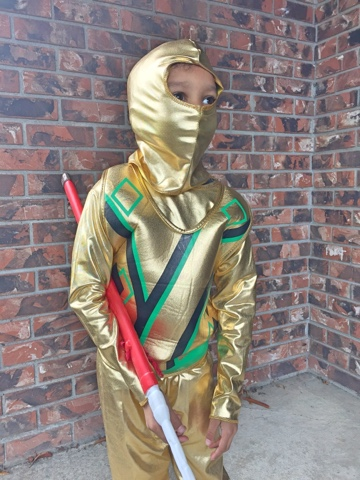 Need a second opinion with your costume purchase? Connect with Costume SuperCentre on Twitter today and they can assist you! & SwankMama: The Golden Ninja - Costume SuperCentre Review