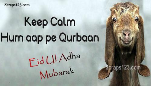 Eid Ul Adha  Image - 4