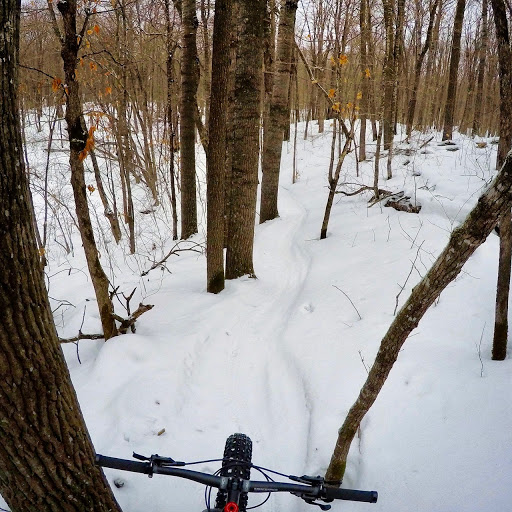 Twin Lakes singletrack. Great conditions since freezing down.