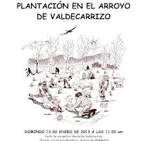 Plantación en Valdecarrizzo - 13 de enero de 2013