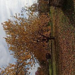 Məryəm Atayeva