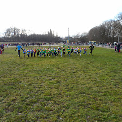 2015 01 31 - sporta veldloop te Zottegem