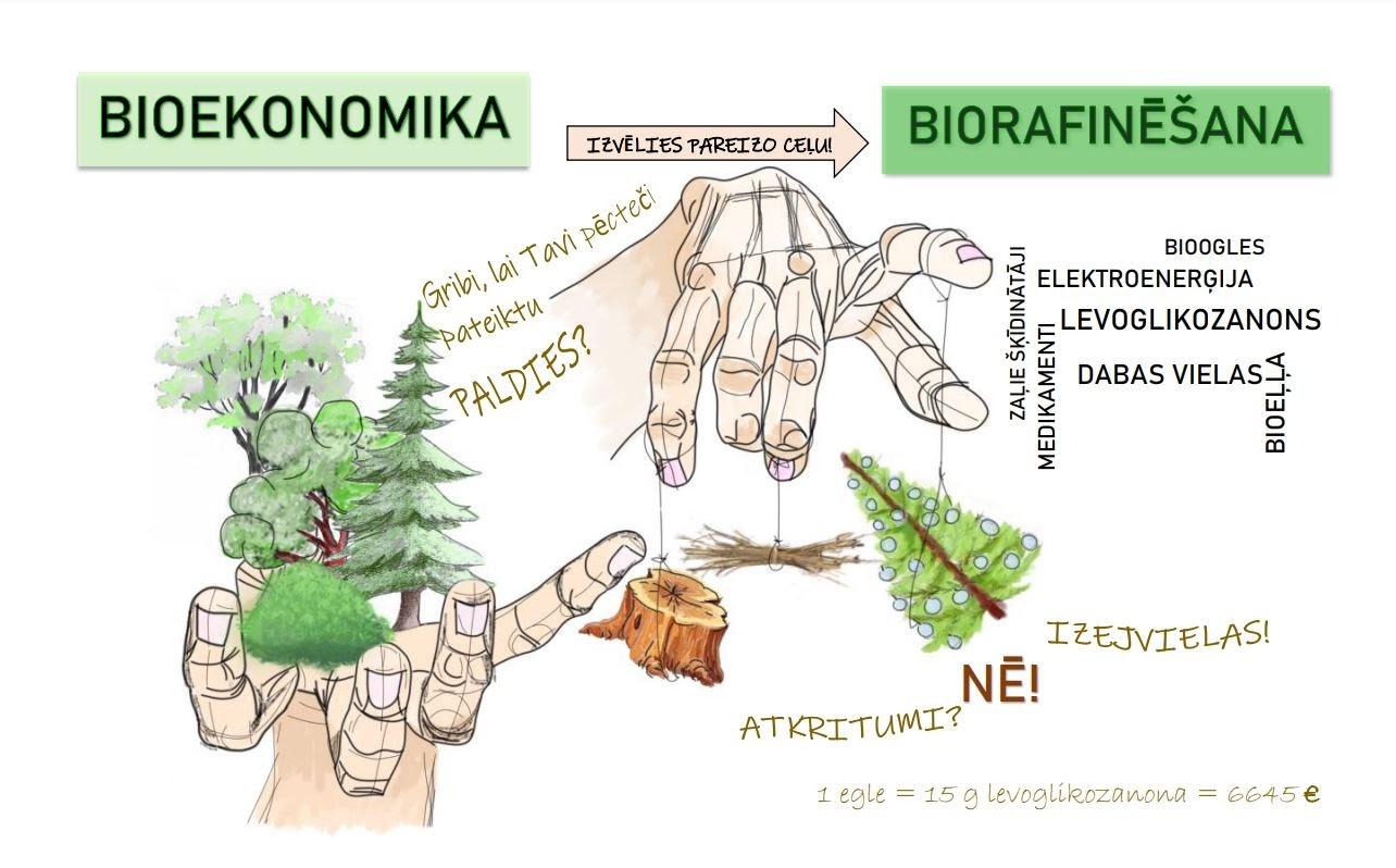 """Diānas Antonovas veidots plakāts stipendiju konkursam vidusskolēniem """"LVM Bioekonomikas skola"""""""