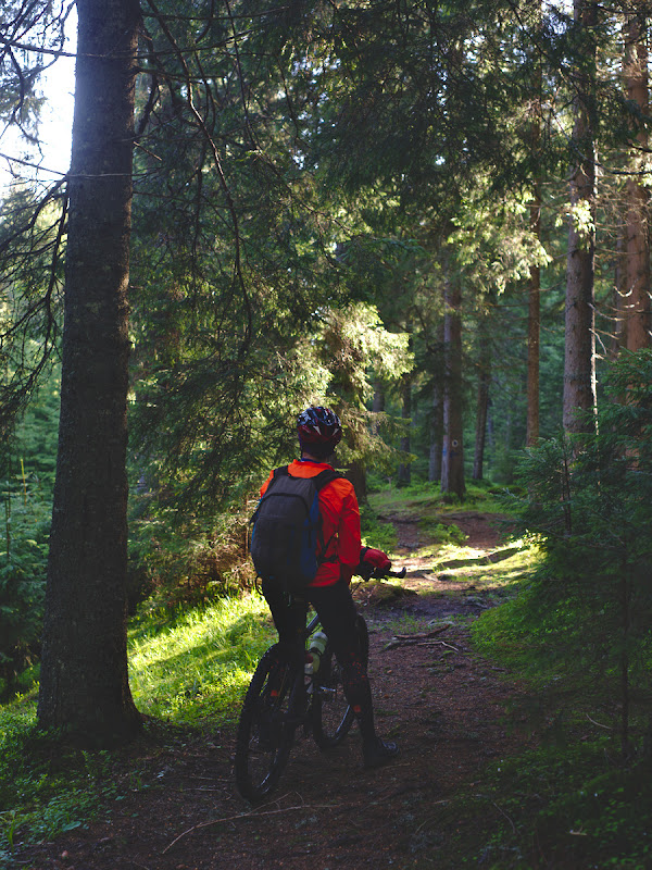 O ultima bucatica de trail de dimineata, in drum spre civilizatie si spre Borsa.