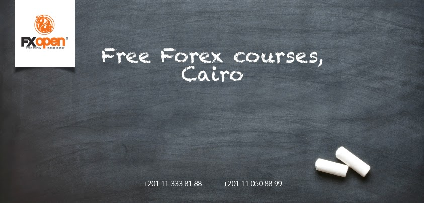 Forex Training Course in Cairo