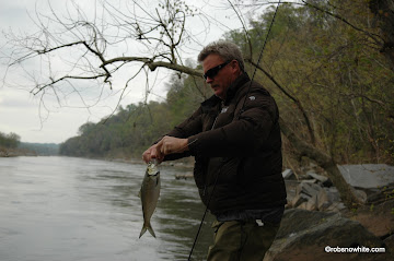 Chain Bridge fly fishing for American shad