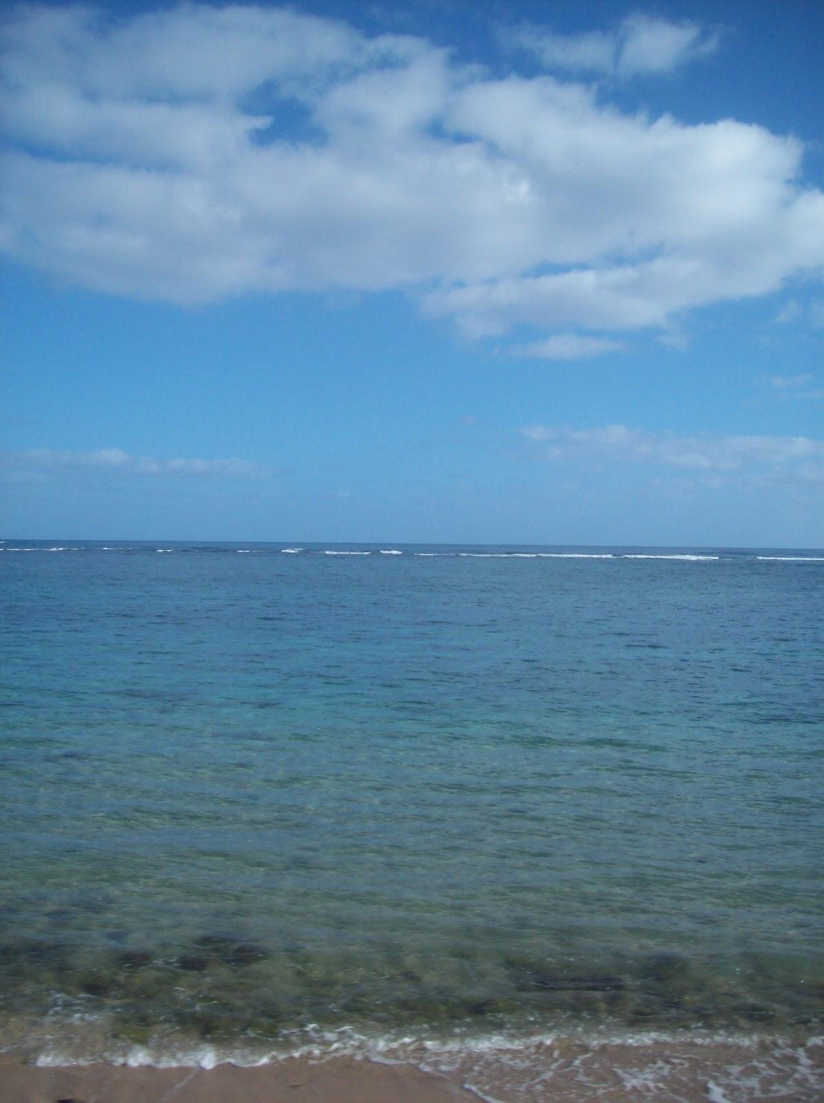 Hawaii Day 3 - 114_1061.JPG