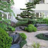 Garten in Zürich