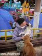 1era visita asistencia animales damnificados terremoto  Pisco 2007 (10)