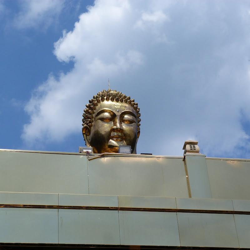Puli. Divers et Golden Buddha.J 12 - P1170602.JPG