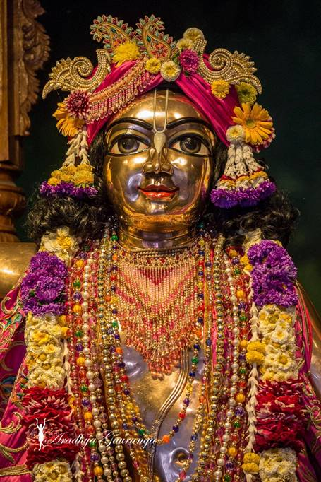 ISKCON Mayapur Deity Darshan 01 Mar 2016 (9)
