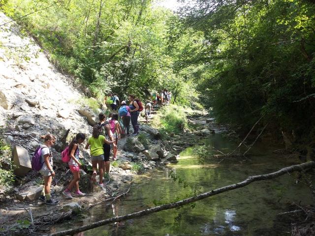PavaglioneLugo.net - La Romagna Estense on-line: Soggiorni estivi ...