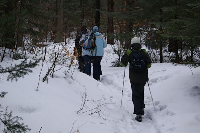 Zajęcia terenowe 29 lutego 2012 - DSC06211_1.JPG