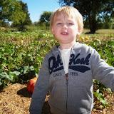 Blessington Farms - 116_4981.JPG